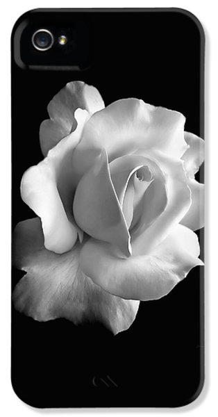 Porcelain Rose Flower Black And White IPhone 5 / 5s Case by Jennie Marie Schell