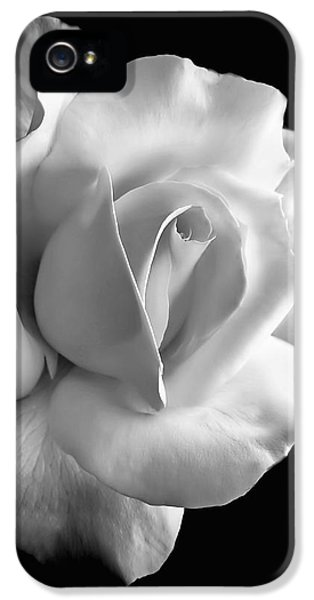 B iPhone 5 Cases - Porcelain Rose Flower Black and White iPhone 5 Case by Jennie Marie Schell