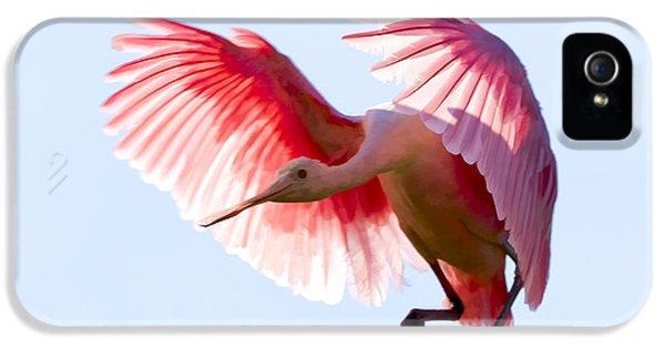 Pretty In Pink IPhone 5 / 5s Case by Janet Fikar