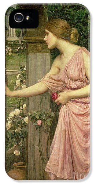 Lady iPhone 5 Cases - Psyche entering Cupids Garden iPhone 5 Case by John William Waterhouse
