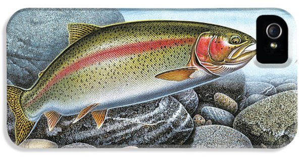 Fly iPhone 5 Cases - Rainbow Trout Stream iPhone 5 Case by JQ Licensing