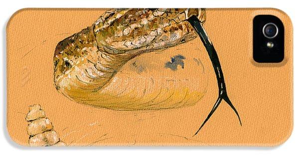 Rattlesnake Painting IPhone 5 / 5s Case by Juan  Bosco