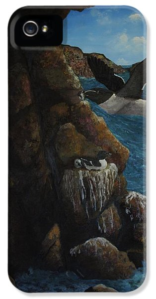 Razorbills IPhone 5 / 5s Case by Eric Petrie