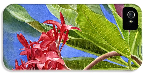 Red Plumeria Blossoms With Colorful Background IPhone 5 / 5s Case by Sharon Freeman