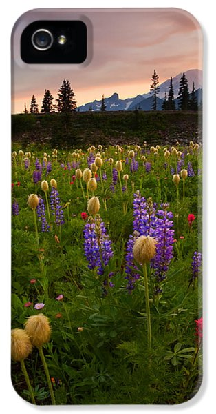 Lupine iPhone 5 Cases - Red Sky Meadow iPhone 5 Case by Mike  Dawson