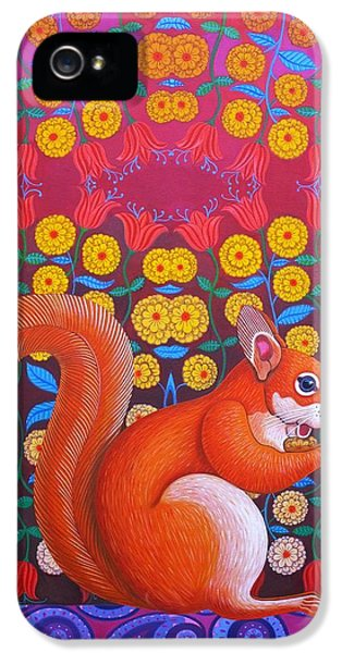 Red Squirrel IPhone 5 / 5s Case by Jane Tattersfield