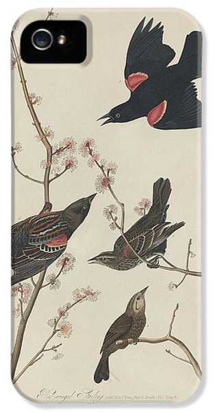 Red-winged Starling IPhone 5 / 5s Case by John James Audubon