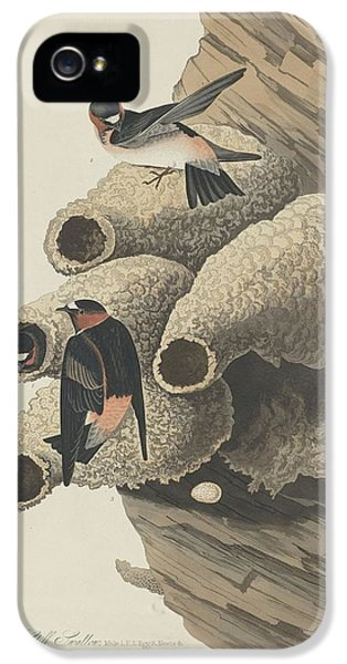 Republican Cliff Swallow IPhone 5 / 5s Case by John James Audubon