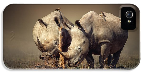 Burnt iPhone 5 Cases - Rhinos with birds iPhone 5 Case by Johan Swanepoel