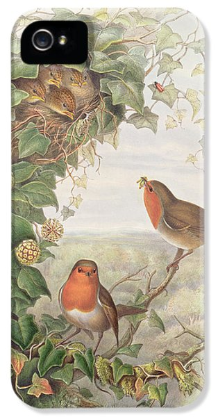 Robin IPhone 5 / 5s Case by John Gould