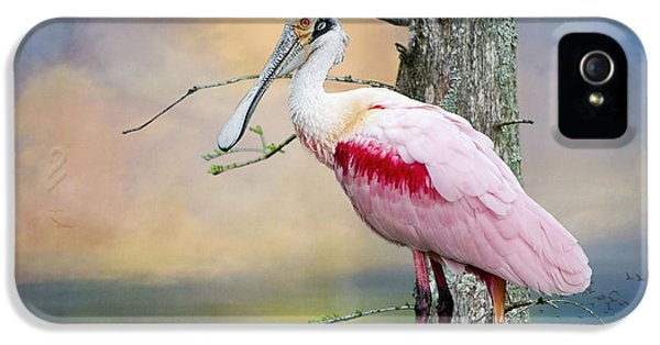 Roseate Spoonbill In Treetop IPhone 5 / 5s Case by Bonnie Barry