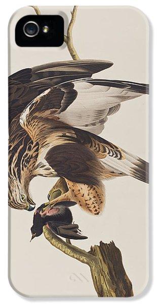 Prey iPhone 5 Cases - Rough Legged Falcon iPhone 5 Case by John James Audubon