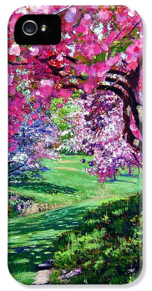 Flowering iPhone 5 Cases - Sakura Romance iPhone 5 Case by David Lloyd Glover