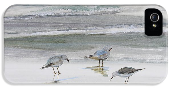 Reflective iPhone 5 Cases - Sandpipers iPhone 5 Case by Julianne Felton