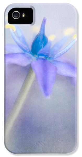 Lensbaby Macro iPhone 5 Cases - Sapphire Blue Caribbean Jewels V iPhone 5 Case by David and Carol Kelly
