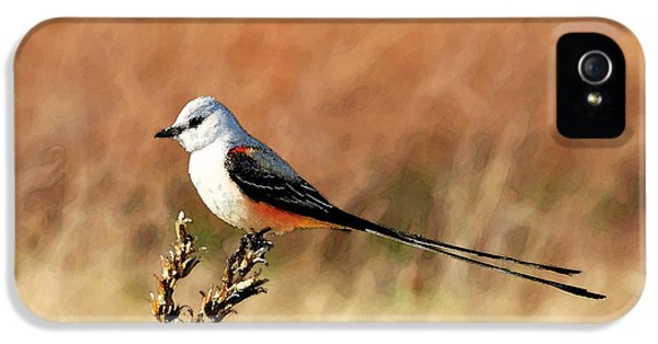 Scissor-tailed Flycatcher IPhone 5 / 5s Case by Betty LaRue