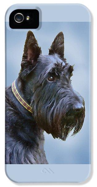 Scottie iPhone 5 Cases - Scottish Terrier Dog iPhone 5 Case by Jennie Marie Schell