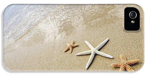 Ashore iPhone 5 Cases - Seastars on Beach iPhone 5 Case by Mary Van de Ven - Printscapes