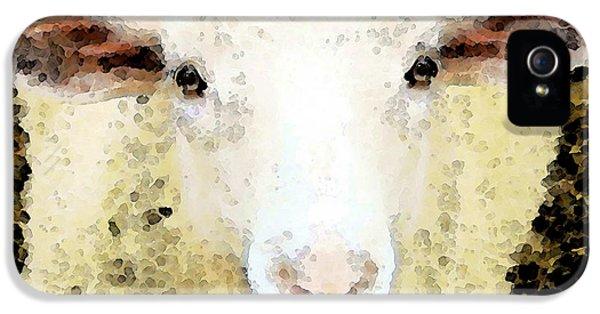 Wool iPhone 5 Cases - Sheep Art - Ewe Rang iPhone 5 Case by Sharon Cummings