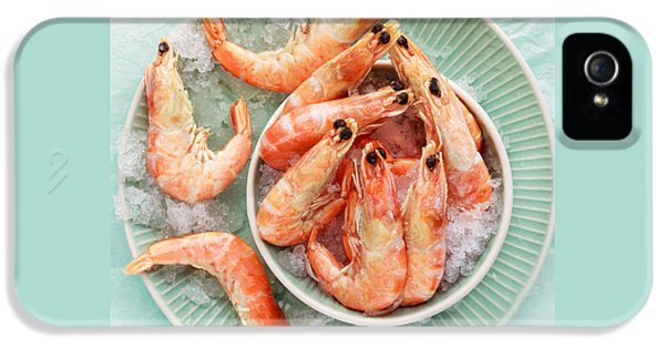 Shrimp On A Plate IPhone 5 / 5s Case by Anfisa Kameneva
