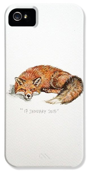 Fox iPhone 5 Cases - Sleeping fox iPhone 5 Case by Venie Tee