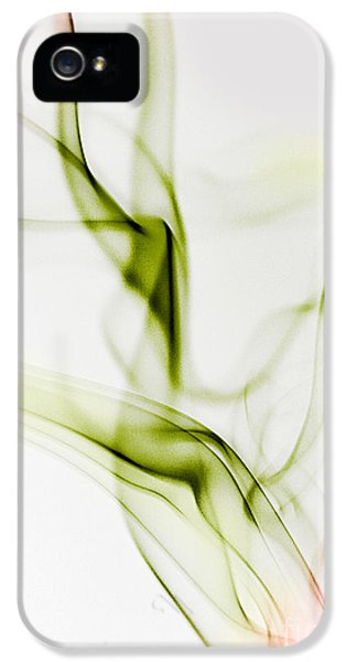 Smoke iPhone 5 Cases - Smoke Wings iPhone 5 Case by Nailia Schwarz