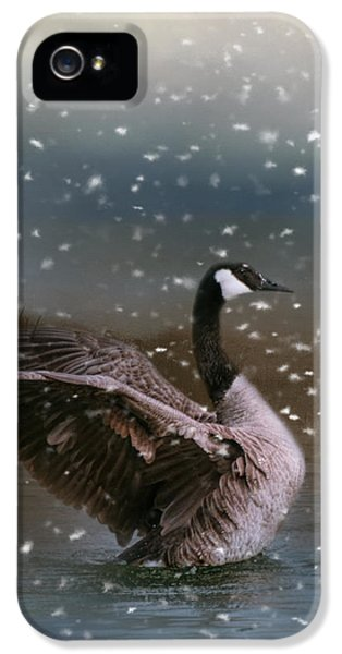 Snowy Swim IPhone 5 / 5s Case by Jai Johnson