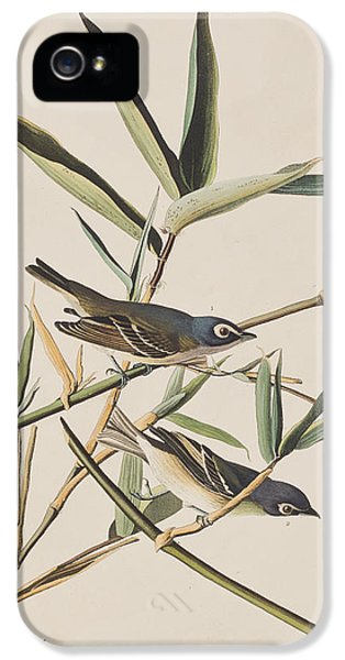 Solitary Flycatcher Or Vireo IPhone 5 / 5s Case by John James Audubon
