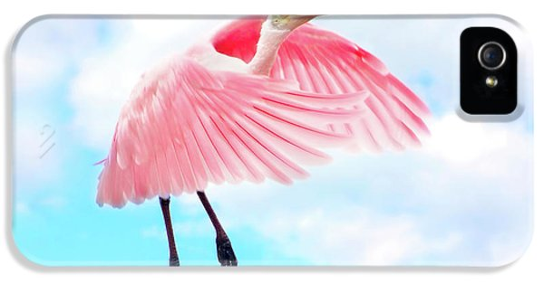 Spoonbill Launch IPhone 5 / 5s Case by Mark Andrew Thomas