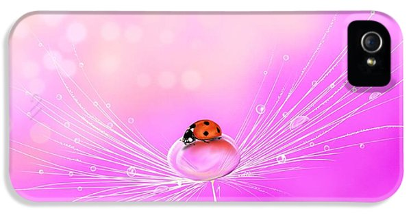 Waterdrop iPhone 5 Cases - Spring elegance iPhone 5 Case by Veronica Minozzi