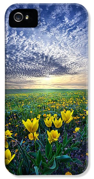 Blue Leaf iPhone 5 Cases - Spring Fever iPhone 5 Case by Phil Koch