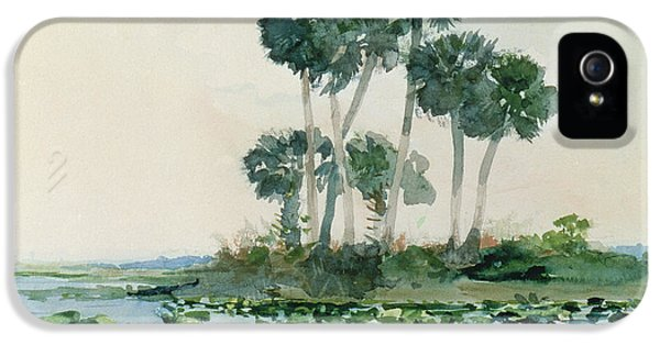 Homer iPhone 5 Cases - St Johns River Florida iPhone 5 Case by Winslow Homer