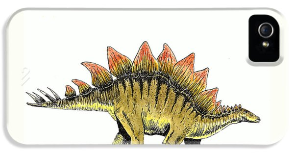 Stegosaurus IPhone 5 / 5s Case by Michael Vigliotti