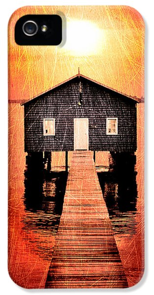 Shed iPhone 5 Cases - Sun Scars iPhone 5 Case by Az Jackson