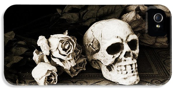 Spooky iPhone 5 Cases - Surreal Gothic Dark Sepia Roses and Skull  iPhone 5 Case by Kathy Fornal