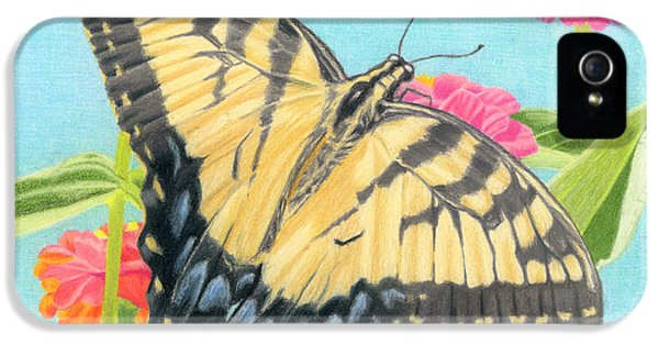 Swallowtail iPhone 5 Cases - Swallowtail Butterfly And Zinnias iPhone 5 Case by Sarah Batalka