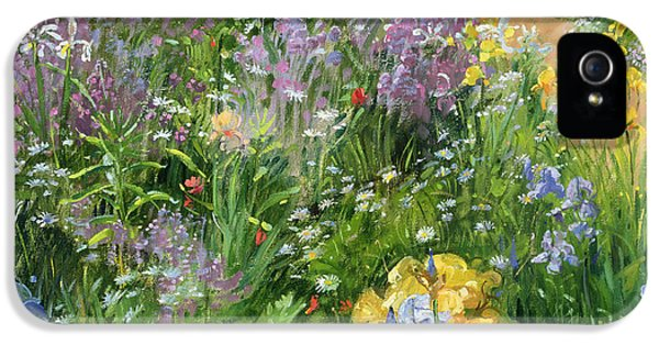 Garden iPhone 5 Cases - Sweet Rocket - Foxgloves and Irises iPhone 5 Case by Timothy Easton