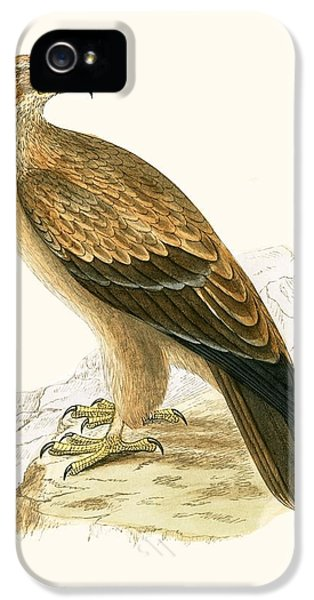 Tawny Eagle IPhone 5 / 5s Case by English School