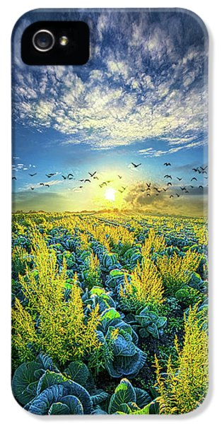 That Voices Never Shared IPhone 5 / 5s Case by Phil Koch