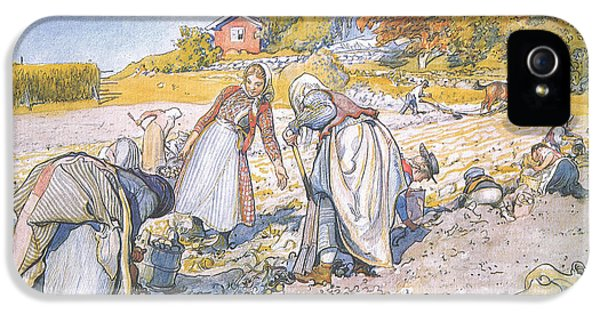 Allotment iPhone 5 Cases - The children filled the buckets and baskets with potatoes iPhone 5 Case by Carl Larsson
