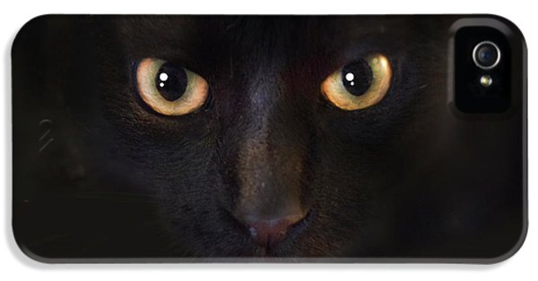 The Dark Cat IPhone 5 / 5s Case by Gina Dsgn