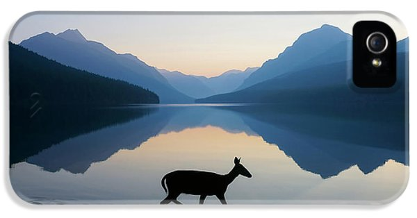 The Grace Of Wild Things IPhone 5 / 5s Case by Dustin  LeFevre
