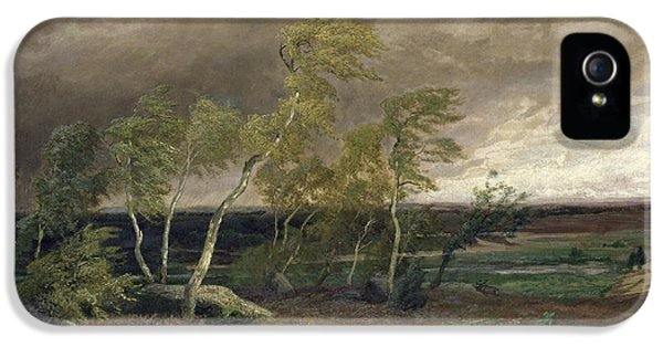 The Heath In A Storm IPhone 5 / 5s Case by Valentin Ruths