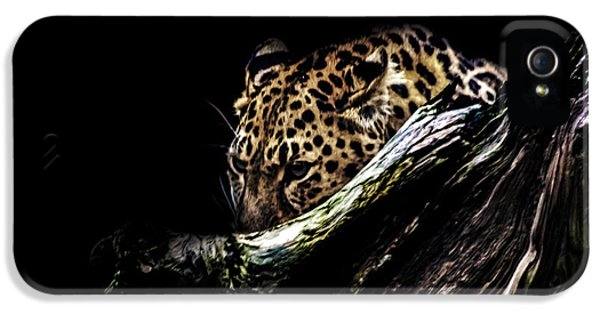 The Hunt IPhone 5 / 5s Case by Martin Newman