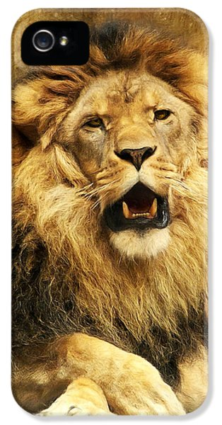 Lion iPhone 5 Cases - The King iPhone 5 Case by Angela Doelling AD DESIGN Photo and PhotoArt