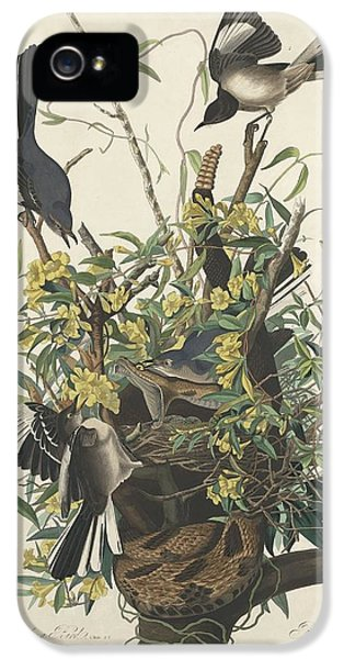 The Mockingbird IPhone 5 / 5s Case by John James Audubon