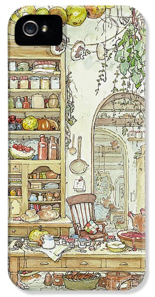 The Palace Kitchen IPhone 5 / 5s Case by Brambly Hedge