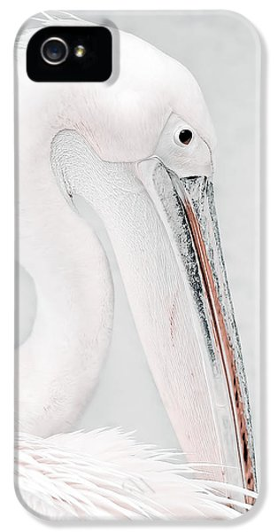 High Key iPhone 5 Cases - The Pelican iPhone 5 Case by Photodream Art