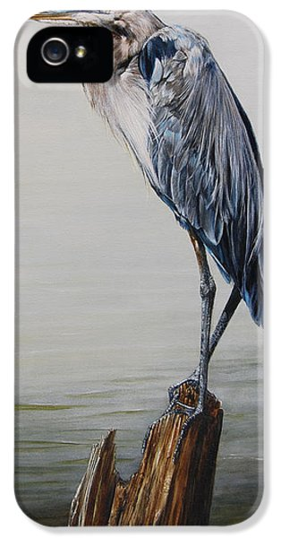 Beak iPhone 5 Cases - The Sentinel - Portrait of a Great Blue Heron iPhone 5 Case by Rob Dreyer AFC