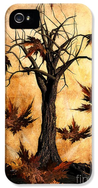 Environment Design iPhone 5 Cases - The song of Autumn iPhone 5 Case by John Edwards